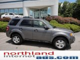 2011 Sterling Grey Metallic Ford Escape XLT 4WD #51079509