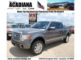 2010 Ingot Silver Metallic Ford F150 Platinum SuperCrew 4x4 #51079686