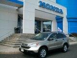 2009 Borrego Beige Metallic Honda CR-V EX 4WD #51080201