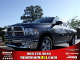 2010 Mineral Gray Metallic Dodge Ram 1500 Big Horn Quad Cab #51134104