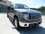 2011 Sterling Grey Metallic Ford F150 Texas Edition SuperCrew 4x4 #51134163