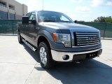 2011 Sterling Grey Metallic Ford F150 Texas Edition SuperCrew 4x4 #51134164