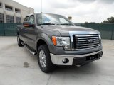 2011 Sterling Grey Metallic Ford F150 Texas Edition SuperCrew 4x4 #51189025