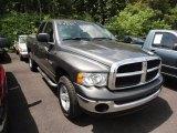 2004 Graphite Metallic Dodge Ram 1500 SLT Quad Cab 4x4 #51188931