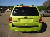 2011 Ford Escape Lime Squeeze Metallic