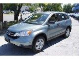 2011 Opal Sage Metallic Honda CR-V LX 4WD #51242092