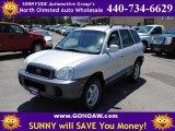 2004 Pewter Hyundai Santa Fe  #51242020