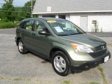 2009 Green Tea Metallic Honda CR-V LX 4WD #51242273