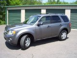 2009 Sterling Grey Metallic Ford Escape XLT V6 4WD #51242087