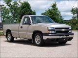 2006 Silver Birch Metallic Chevrolet Silverado 1500 Work Truck Regular Cab #51272355