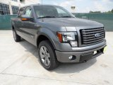 2011 Sterling Grey Metallic Ford F150 FX4 SuperCrew 4x4 #51288561