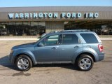 2010 Steel Blue Metallic Ford Escape Limited V6 4WD #51288730