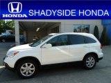 2009 Taffeta White Honda CR-V EX-L 4WD #51542021