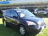 2008 Royal Blue Pearl Honda CR-V EX 4WD #51542200