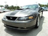 2004 Ford Mustang Mach 1 Coupe Data, Info and Specs
