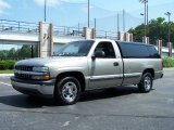 2002 Light Pewter Metallic Chevrolet Silverado 1500 LS Regular Cab #51669992
