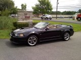 2001 Black Ford Mustang GT Convertible #51669901