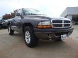 2004 Graphite Metallic Dodge Dakota Sport Regular Cab #51724000