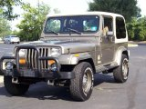 Jeep Wrangler 1990 Data, Info and Specs