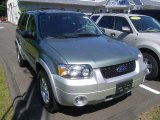2006 Titanium Green Metallic Ford Escape Hybrid 4WD #51777428