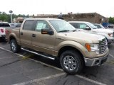 2011 Pale Adobe Metallic Ford F150 XLT SuperCrew 4x4 #51856341