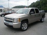 2009 Chevrolet Silverado 1500 Silver Birch Metallic