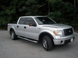 2010 Ingot Silver Metallic Ford F150 FX4 SuperCrew 4x4 #51857217