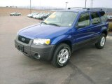 2006 Sonic Blue Metallic Ford Escape XLT V6 4WD #5169736