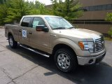2011 Pale Adobe Metallic Ford F150 XLT SuperCrew 4x4 #52086971