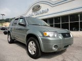 2006 Titanium Green Metallic Ford Escape Limited 4WD #52118030