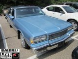 Chevrolet Caprice 1989 Data, Info and Specs