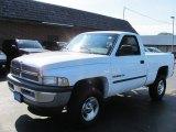 2001 Bright White Dodge Ram 1500 SLT Regular Cab 4x4 #52150336