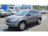2010 Urban Titanium Metallic Honda CR-V EX #52150216
