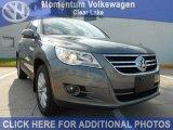 2011 Alpine Gray Metallic Volkswagen Tiguan SE #52201250
