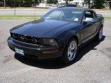 2006 Black Ford Mustang V6 Premium Convertible #52200581