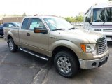 2011 Pale Adobe Metallic Ford F150 XLT SuperCab 4x4 #52200777