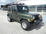 2006 Jeep Green Metallic Jeep Wrangler X 4x4 #52362102
