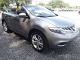 Platinum Graphite Nissan Murano in 2011