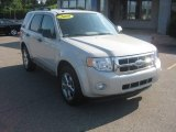 2009 Light Sage Metallic Ford Escape XLT #52396174