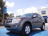 2011 Sterling Grey Metallic Ford Escape XLT #52453345