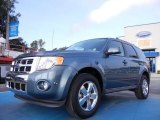 2010 Steel Blue Metallic Ford Escape Limited V6 #52453364
