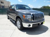 2011 Sterling Grey Metallic Ford F150 Texas Edition SuperCrew #52453566