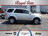 2009 Brilliant Silver Metallic Ford Escape Limited V6 #52547264