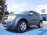 2012 Ford Escape Steel Blue Metallic
