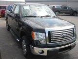 2011 Ebony Black Ford F150 XLT SuperCab 4x4 #52598511