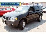 2006 Black Ford Escape XLT V6 4WD #52598152