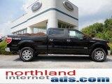 2011 Ebony Black Ford F150 XLT SuperCrew 4x4 #52658562