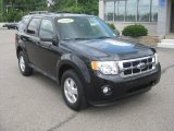 2009 Black Ford Escape XLT #52688046