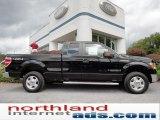 2011 Ebony Black Ford F150 XLT SuperCab 4x4 #52724524