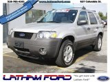 2006 Silver Metallic Ford Escape XLT V6 4WD #52724354
